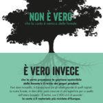 Twosides – il lato verde della carta no nemica delle foreste