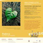 Per un'etica del digitale con Derrick de Kerckhove – 12 maggio Padova